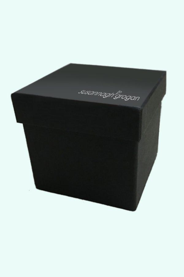 Ladybug Ties box