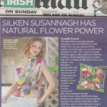 irish-mail-on-sunday-oct16-sml