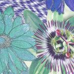 Blue Trellis Classic Square by Irish print designer Susannagh Grogan